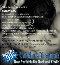 Brooke Page Conklin Books teaser 2