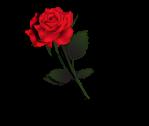 Rose Divider 2