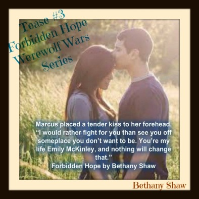 teaser 3, author made with anna edits forbidden hope