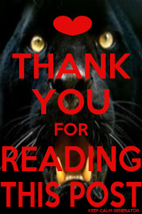 Thnk you for reading