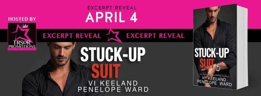 stuck up suit excerpt reveal