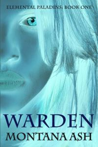 Warden Final Cover Front-JPEG